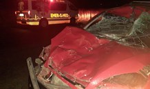 Vehicle collided with an animal on the R712