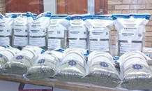 Rural flying squad seize R300 000 worth drugs during weekend operations in the Southern Cape