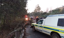 Seven injured after tree crashes down on cars on the R33