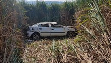 Car ends up in sugarcane field during crash