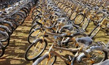 Transport Minister to visit De Aar to roll out Shova Kalula bicycles