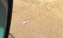 Aeroplane crashes in the KZN Midlands.