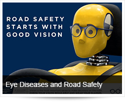 Eye Diseases and Road Safety