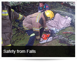 Safety end Emergency Response from Falls and Falling Objects